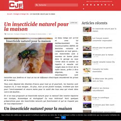 Un insecticide naturel pour la maison - Comment je fais