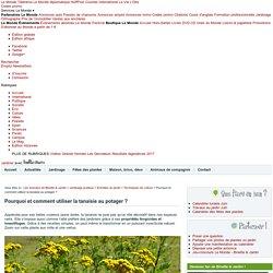 La tanaisie : insecticide naturel, recette infusion ou purin - Utilisation au jardin