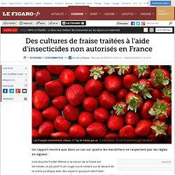 LE FIGARO 08/09/13 Des cultures de fraise traitées à l'aide d'insecticides non autorisés en France