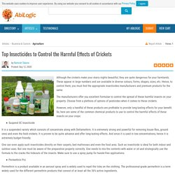 Top Insecticides to Control the Harmful Effects of Crickets