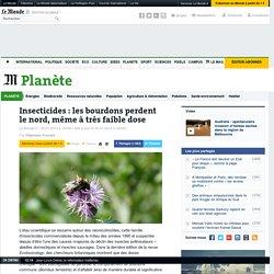 Même à faible dose, les insecticides désorientent les bourdons