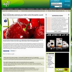 AGRI85 16/05/12 Deux insecticides autorisés pour lutter contre Drosophila suzukii