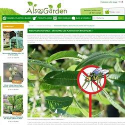 Insecticides naturels : Découvrez les plantes anti-moustiques - Alsagarden, Plantes Rares