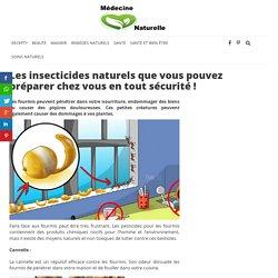 Les insecticides naturels que vous pouvez préparer chez vous en tout sécurité ! - MÉDECINE NATURELLE
