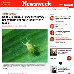 DARPA Is Making Insects That Can Deliver Bioweapons, Scientists Claim