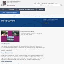 Insee Guyane