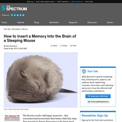 How to Insert a Memory Into the Brain of a Sleeping Mouse