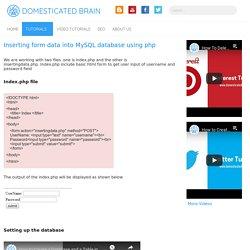 Inserting form data into MySQL database using php - Domesticated Brain