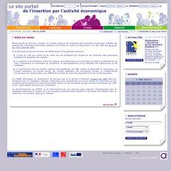 Rôle du CNIAE - Le site portail de l'insertion par l'activité économique