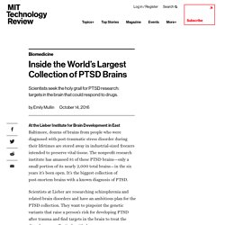 Inside the World's Largest Collection of PTSD Brains