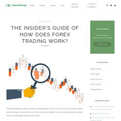 The Insider's Guide of How Does Forex Trading Work?