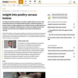 WORLD POULTRY 15/06/16 Insight into poultry carcass lesions