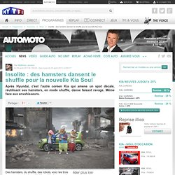 Insolite : des hamsters dansent le shuffle pour la nouvelle Kia Soul - News Automoto