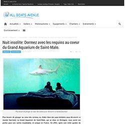 Nuit insolite: Dormez avec les requins au coeur du Grand Aquarium de Saint-Malo.