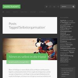 Inspect & Adapt – Selbstorganisation