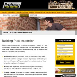 Building pest inspection - Melbourne Pre-sale & pre-purchase buildings