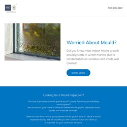 Mold Inspection - Air Quality Testing