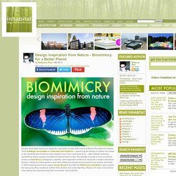 Finding Inspiration in Nature - Biomimicry for a Better Planet