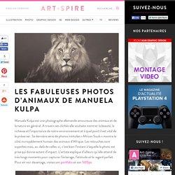 Les fabuleuses photos d'animaux de Manuela Kulpa