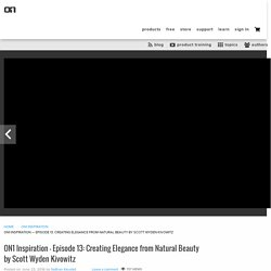 ON1 Inspiration — Episode 13: Creating Elegance from Natural Beauty by Scott Wyden Kivowitz – ON1 News