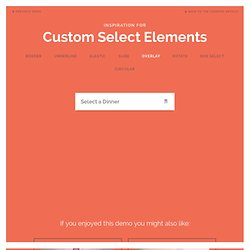 Inspiration for Custom Select Elements
