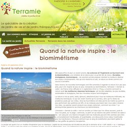 Quand la nature inspire : le biomimétisme - Terramie