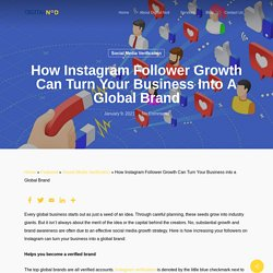 How Instagram Follower Growth Can Turn Your Business into a Global Brand