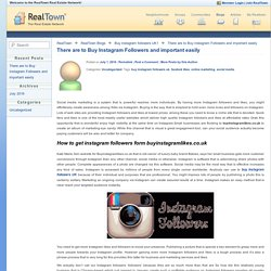 There are to Buy Instagram Followers and important easily