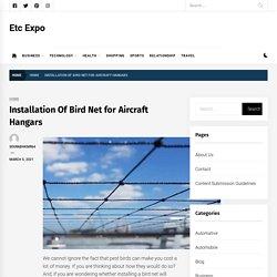 Installation Of Bird Net for Aircraft Hangars