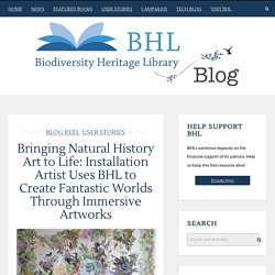 Bringing Natural History Art to Life: Installation Artist Uses BHL to Create Fantastic Worlds Through Immersive Artworks