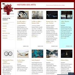 Exemples d'Installations d'artistes