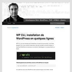 WP CLI, installation de WordPress en quelques lignes - Arnaud Banvillet