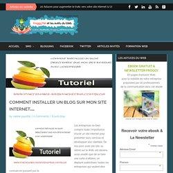 Comment installer un blog sur mon site internetFroggy'Net et le Web 2