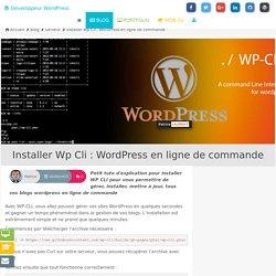 Installer Wp Cli : WordPress en ligne de commande