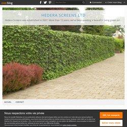 Green Wall Installers Near You - Hedera Screens Ltd
