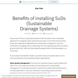 Benefits of installing SuDs (Sustainable Drainage Systems) – Site Title