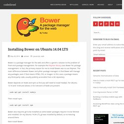 Installing Bower on Ubuntu 14.04 LTS