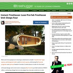 Instant Treehouse: Luxe Pre-Fab Treehouse Unit Sleeps Four