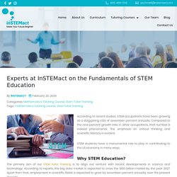 Experts at InSTEMact on the Fundamentals of STEM Education