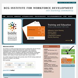 BCG Institute for Workforce Development