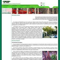Instituto de Pesquisas e Estudos Florestais IPEF