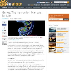 Genes: The Instruction Manuals for Life
