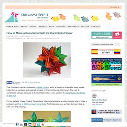 Video on How to Make a Kusudama With the Carambola Flower by Carmen Sprung