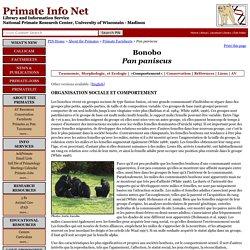 Les Feuilles Instructives du Primate: Bonobo (Pan paniscus) Comportement