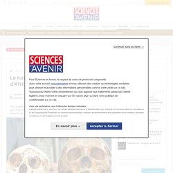 L'homme de Florès ne serait pas un nain insulaire mais un Homo primitif minuscule - Sciencesetavenir.fr