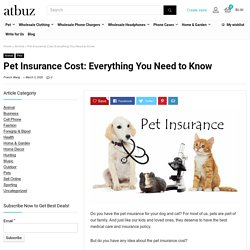 Pet Insurance Cost: Everything You Need to Know