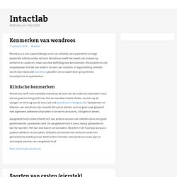 Home « Intactlab, Multi-touch Hardware & Software