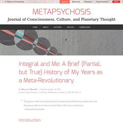 Integral and Me: A Brief (Partial, but True) History of My Years as a Meta-Revolutionary