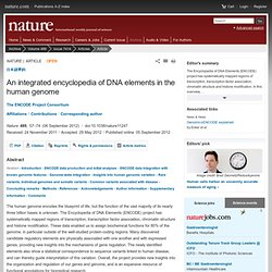 An integrated encyclopedia of DNA elements in the human genome : Nature