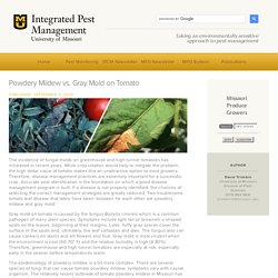 UNIVERSITY MISSOURI 04/09/20 Integrated pest management - Powdery Mildew vs. Gray Mold on Tomato